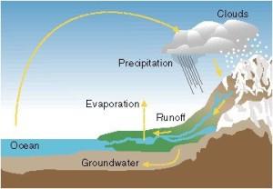 Figure 1.1 - Hydrologic Cycle